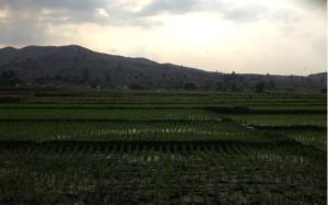 Sitio Mapita 2